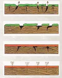 Набухание и высыхание древесины